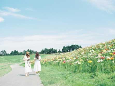 「箱館山ゆり園」で絶景と甘い香りを満喫【Masa の関西カメラさんぽ4】