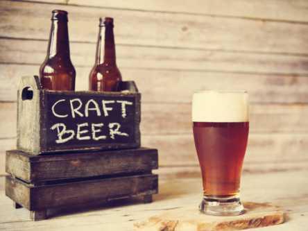 """""""なんとなくクラフトビール""""から卒業!誰でも自分好みの味と出合える選び方"""