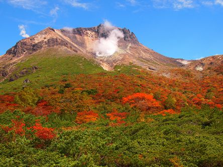 栃木県でおすすめの紅葉名所~見頃やライトアップなどの2020年情報~