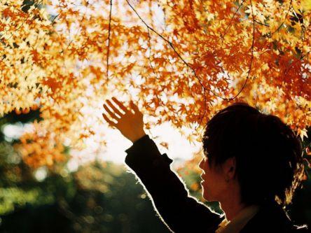 【フォトグラファー・もろんのんが切り取る景色vol.7】東京近郊の紅葉編