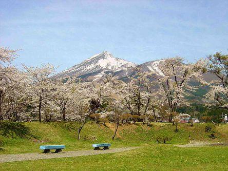 会津・喜多方・磐梯・猪苗代のお花見・桜の名所(2021)夜桜・ライトアップも