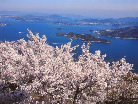 広島県のお花見・桜の名所(2020)夜桜・ライトアップや桜祭りも
