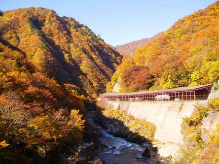 山形県でおすすめの紅葉名所~見頃やライトアップなどの2020年情報~