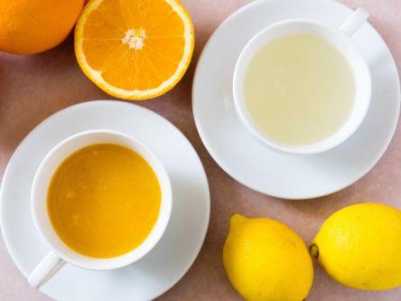 柑橘のベストシーズン到来!愛媛の人気パーラーで冬限定のメニューを楽しもう