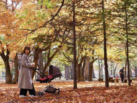 暮らすように楽しむ、秋と冬の狭間の札幌【村上萌の北海道で#週末野心1】