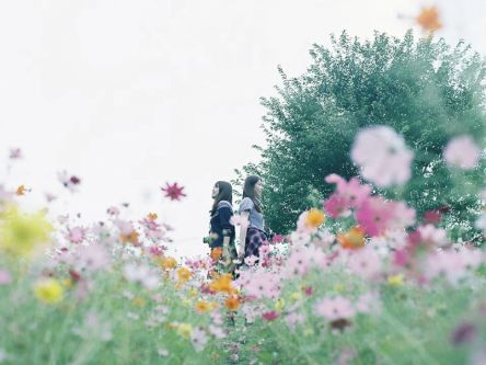 秋の「万博記念公園」は絶景コスモススポット【Masaの関西カメラさんぽ10】