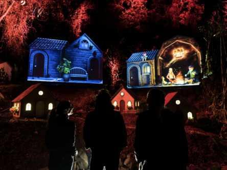 リゾートアイランドの最新夜遊び!光と映像のデジタルアートで森を体験