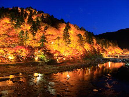 秋のデートにも。東海の紅葉ライトアップがおすすめの名所2020