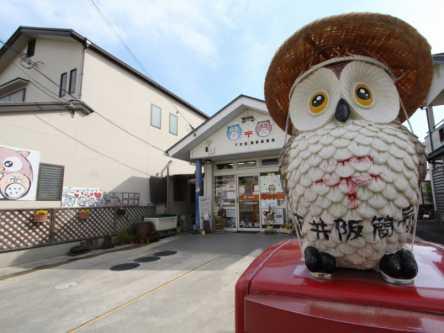 郵便局がパワースポット!?福をよんでくれるフクロウに会いたい!