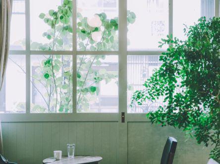 築50年の倉庫を改装した「fukadaso cafe」で過ごす優しい時間【6151が撮るコーヒーのある風景vol.6】