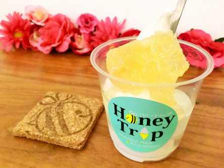 """美容フード""""蜂の巣""""が山盛り!ピュアなおいしさ「Honey Trip」のソフトクリーム"""