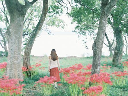 明るくて美しい水辺の彼岸花で秋を感じる【Masaの関西カメラさんぽ9】