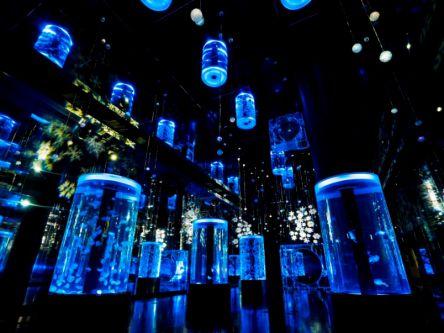 青で包まれた幻想的な雪と氷の世界「マクセル アクアパーク品川」の『スノーアクアリウム』で夜遊びしよっ