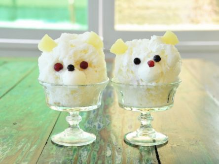 そんなに見つめられたら食べられない!?とびきりかわいい数学カフェの白熊