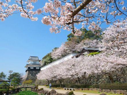 長崎県のお花見・桜の名所(2021)夜桜・ライトアップや桜祭りも