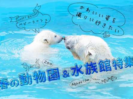 かわいい姿を撮りに行きたい!春の動物園&水族館特集