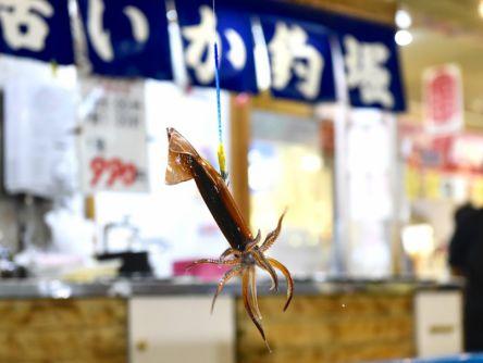 【通がおすすめ】函館のグルメ&観光スポット7選!何度でも行きたいリピーター必見の魅力を紹介